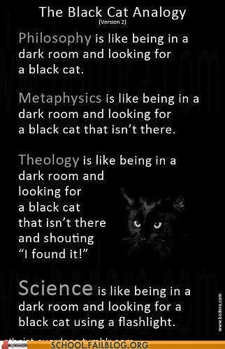analogies black cat Cats metaphysics philosophy schrodingers-cat science theology categoryimage categoryvoting-page
