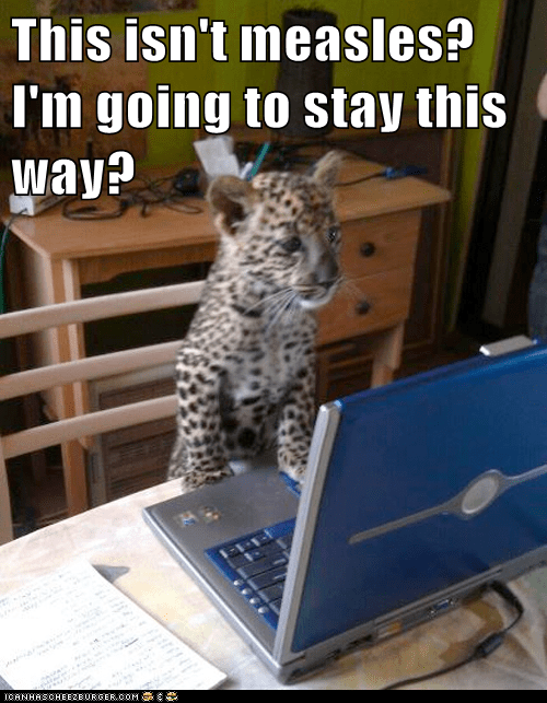 leopard cub cheetah measles internet stay forever - 6625998080