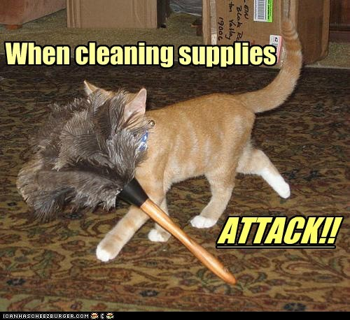 When cleaning supplies ATTACK!!
