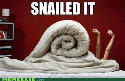 bed,Nailed It,snail