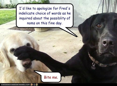 I'd like to apologize for Fred's indelicate choice of words as he inquired about the possiblity of noms on this fine day. Bite me.
