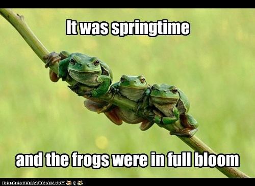 It was springtime and the frogs were in full bloom