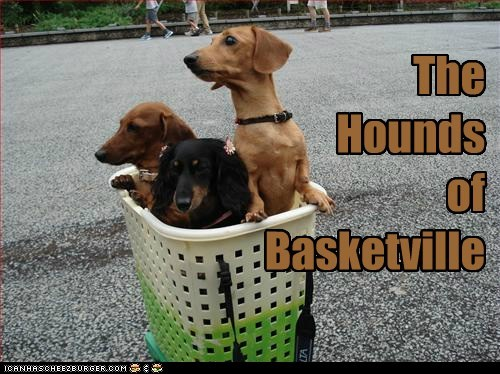 The Hounds of Basketville