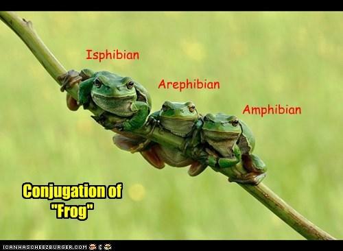 """Isphibian Arephibian Amphibian Conjugation of """"Frog"""""""