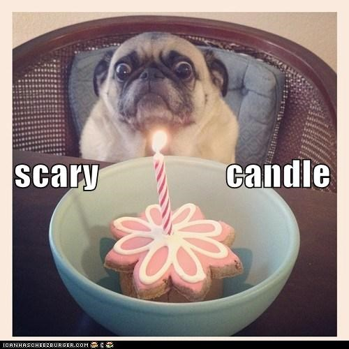 scary                  candle