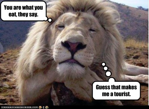 lion,you are what you eat,idiom,tourists,eating people