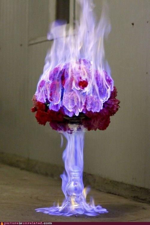 breakup epic flaming flowers - 6628804608