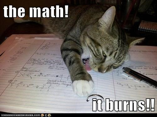 arithmetic burns captions Cats gross homework math school