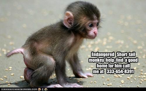 Cheezburger Image 6629286656