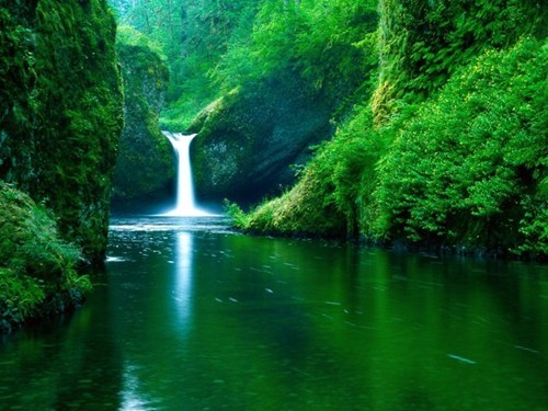 landscape waterfall oregon - 6629400576