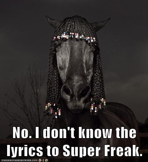 horse superfreak rick james cornrows wig lyrics no - 6629702144