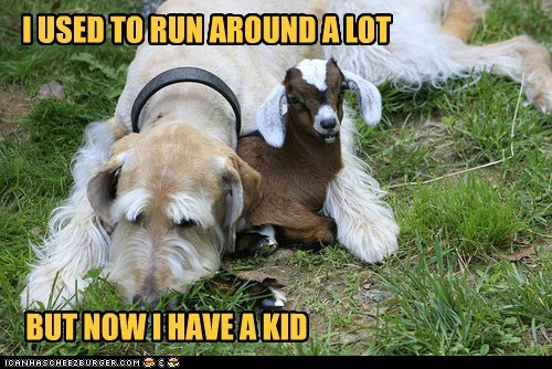 I USED TO RUN AROUND A LOT BUT NOW I HAVE A KID