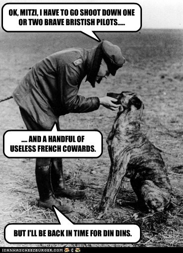 war soldier pilot dogs - 6631132672