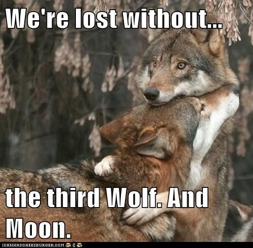 wolves hug lost moon three wolf moon T.Shirt Sad