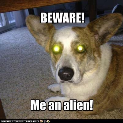 BEWARE! Me an alien!