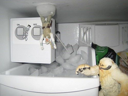 cute freezer nerdgasm star wars wampa best of week Hall of Fame categoryimage