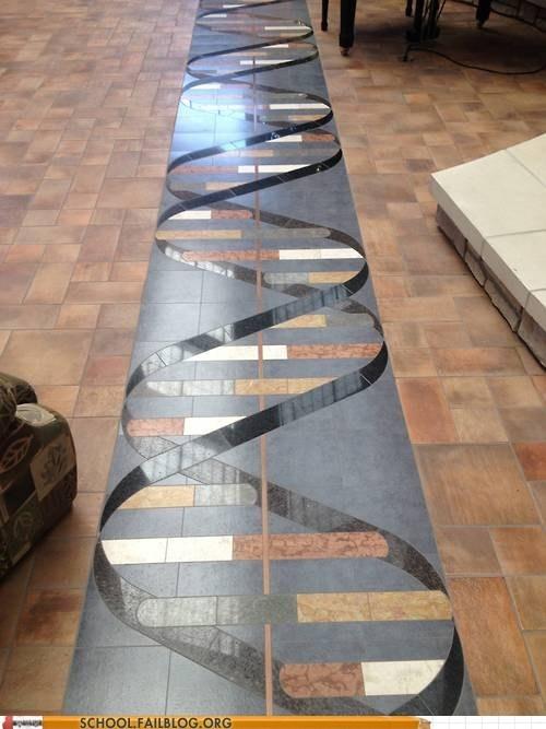 DNA my house tiles floor - 6633736704