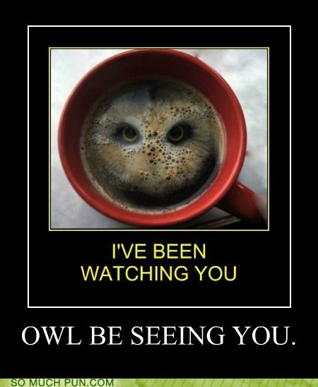 i will,Owl,similar sounding,literalism,coffee,shape,shoop