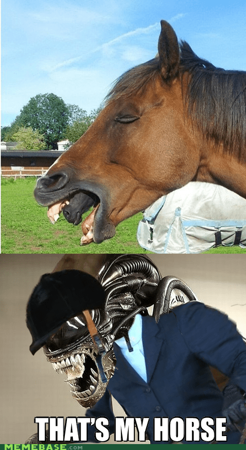 alien alien vs rider categoryvoting-page horse - 6635086848