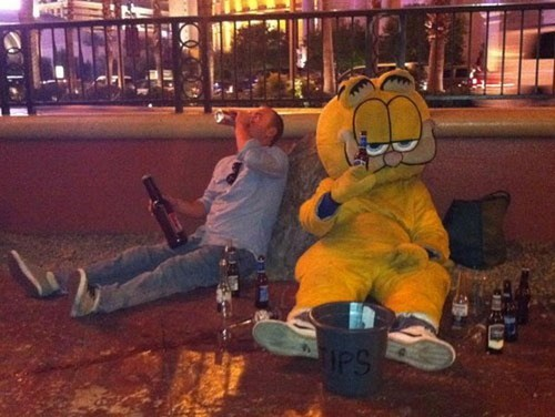 cat,costume,garfield,low point
