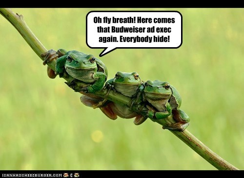 commercial beer Ad budweiser hide frogs - 6635429120