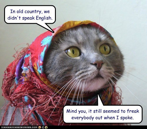 captions Cats english old country russia speak Talking Animals categoryimage