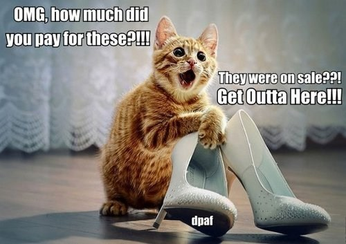 cat high heels categoryimage - 6636047360
