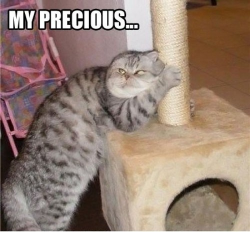 captions Cats gollum Lord of the Rings mine movies my precious scratching posts - 6636086272