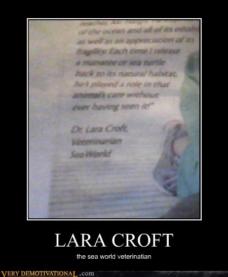 lara croft,Tomb Raider,veterinarian,sea world