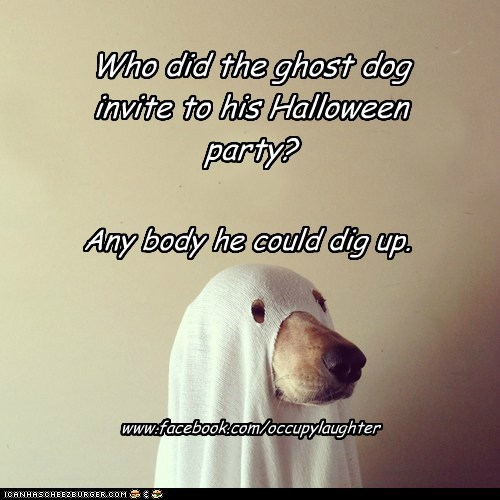 Who did the ghost dog invite to his Halloween party? Any body he could dig up. www.facebook.com/occupylaughter