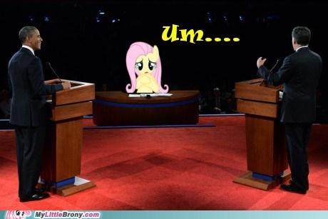 candidates,fluttershy,jim lehrer,obama,Romney