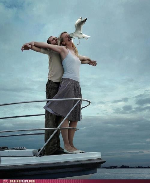 leo dicaprio seagull the king of the world titanic categoryimage categoryvoting-page