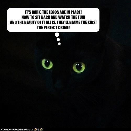 basement cat captions Cats crime cruel lego mean ow pain practical joke step on a lego - 6638958848