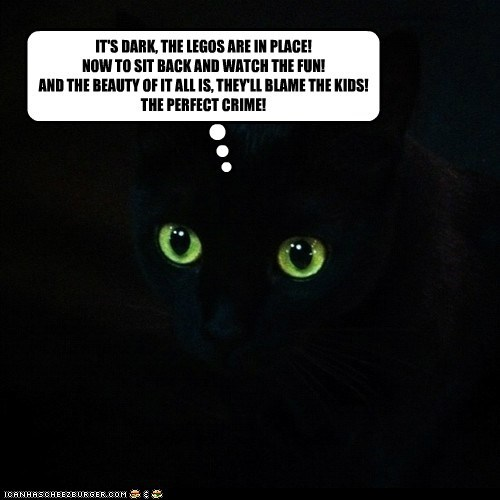 basement cat captions Cats crime cruel lego mean ow pain - 6638958848