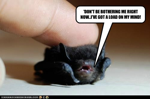 heavy baby dont-bother-me load cute mind small squee bat - 6640241152