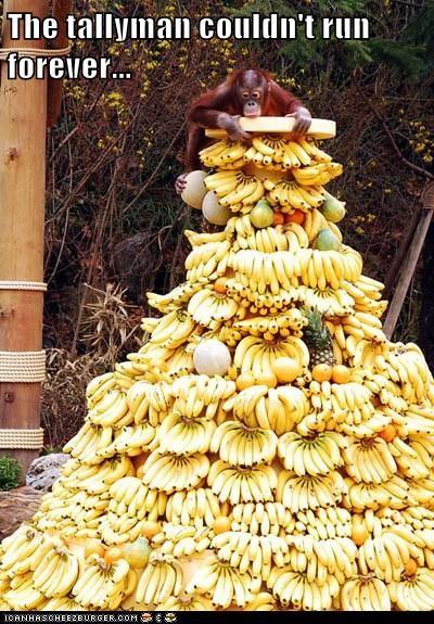 forever Harry Belafonte run tally bananas orangutan dayo fruit - 6640391424