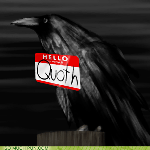quoth,raven,nevermore,the raven,Edgar Allan Poe,double meaning