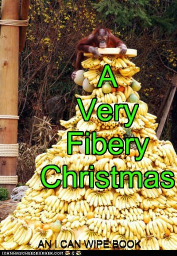 A Very Fibery Christmas AN I CAN WIPE BOOK AN I CAN WIPE BOOK
