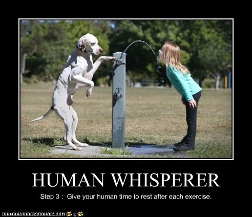 HUMAN WHISPERER Step 3 : Give your human time to rest after each exercise.