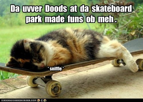 skateboard,skate park,tease,bully,mean,Cats,captions,sniffle