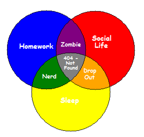 college,my life,school,homework,sleep,social life,venn diagram