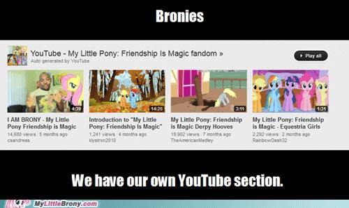 youtube Bronies fandom section - 6643198976