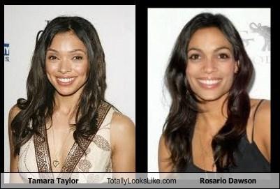 funny TLL tamara taylor Rosario Dawson actor celeb - 6644065792