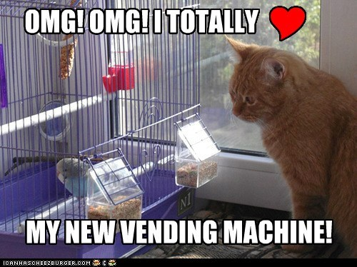 vending machine bird cage bird cage parakeet Cats captions birds