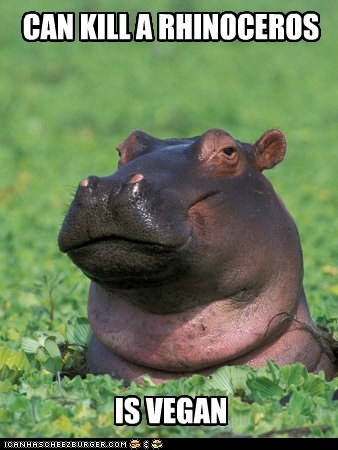strong hipster vegan hippo hungry hungry hippos - 6644194816
