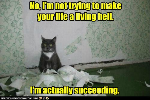 No, I'm not trying to make your life a living hell. I'm actually succeeding.
