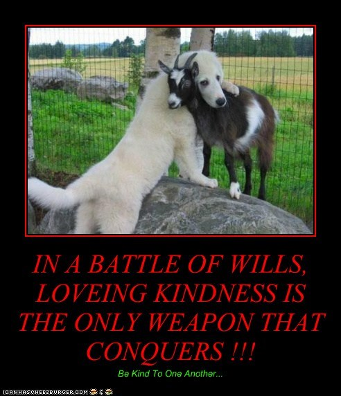 IN A BATTLE OF WILLS, LOVEING KINDNESS IS THE ONLY WEAPON THAT CONQUERS !!! Be Kind To One Another...