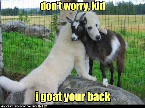 i goat your back don't worry, kid