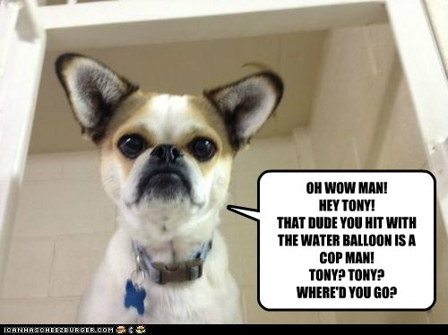 OH WOW MAN! HEY TONY! THAT DUDE YOU HIT WITH THE WATER BALLOON IS A COP MAN! TONY? TONY? WHERE'D YOU GO?