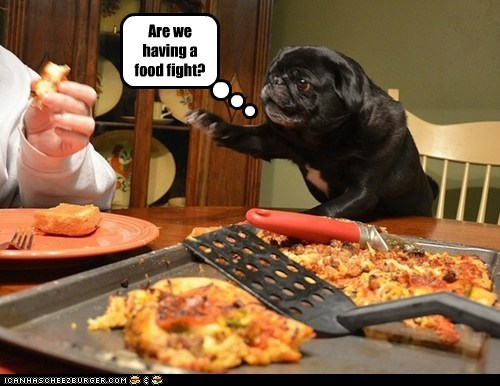 Are we having a food fight?